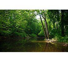 The Wickecheoke Creek # 1 Photographic Print
