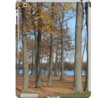 Beauty of Fall iPad Case/Skin