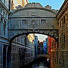 The Bridge to a miserable future by hans p olsen