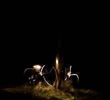 Night tree with dancing lights by dapedwa