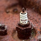 Spark Plug by Emily Freeman Photography