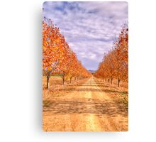 Autumn  Drive - Gulgong,NSW - The HDR Experience Canvas Print