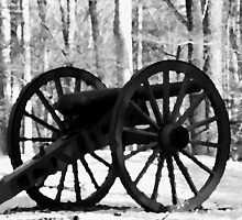 Battlefield Park Cannon by Karen Harrison