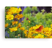 Butterfly in yellow Canvas Print