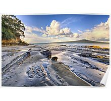 Narrow Neck Beach Poster
