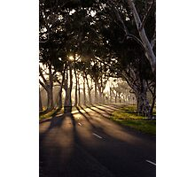 Early morning ride in the park Photographic Print