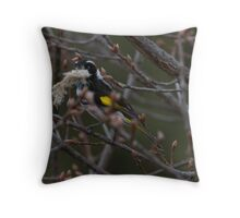 Spring is approaching  New Holland Honey Eater with nesting Material Throw Pillow
