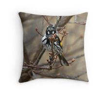 New Holland Honey Eater Throw Pillow
