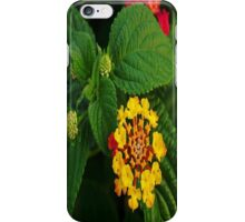 Red and Yellow Lantana Flower and Green Leaves iPhone Case/Skin
