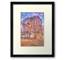 Colours - Hill End NSW Australia - The HDR Experience Framed Print