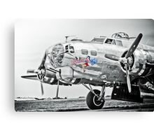 The Yankee Lady Canvas Print