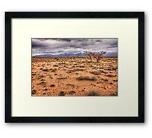 Flinders Ranges pastoral land Framed Print
