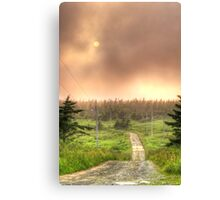 The Road to Cranberry Head Canvas Print
