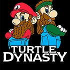 Turtle Dynasty by pixhunter