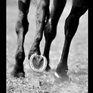 iPAD CASE The Gallop  by Darren Bailey LRPS