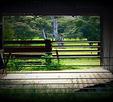 Through the cattle Shed by Chris Chalk