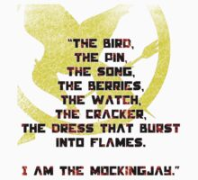 Hunger Games - Catching Fire by cleo1308me
