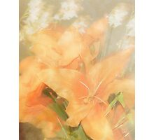 Orange Lily Photographic Print
