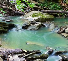Stream in Motion by Jim McCarron