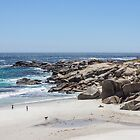 BEAUTIFUL BEACH IN SOUTH AFRICA 05 by danvar