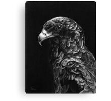 Bateluer Eagle in Ballpoint Pen Canvas Print