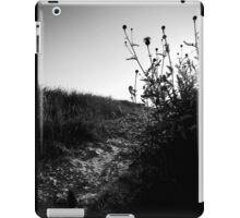 iPAD CASE The hidden pathway iPad Case/Skin