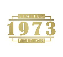 1973 Birthday Limited Edition by thepixelgarden