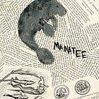 Manatee by CassTebeau