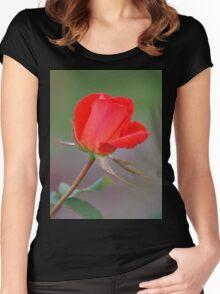 Valentine wish Women's Fitted Scoop T-Shirt