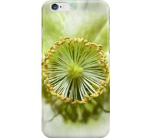 Christmas Rose - White Flower iPhone Case/Skin