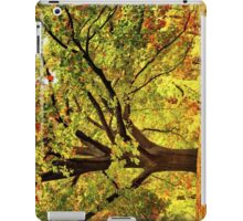 Golden Oak Tree  iPad Case/Skin