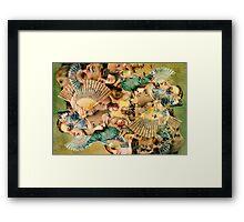 Raphael's Fan. Framed Print