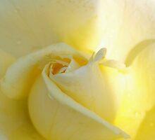Sweet and hopeful by ♥⊱ B. Randi Bailey