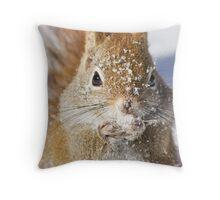 Harsh winter Throw Pillow