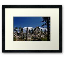 """"""" California Dreaming """" Framed Print"""