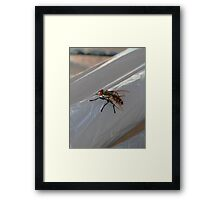 ©HCS White Shoes Paintography Framed Print