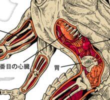 Kaiju Anatomy Sticker