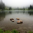 Sheep Lake - Mt. Rainier N.P. by Mark Heller