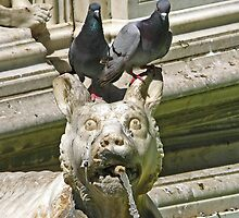 Fountain detail - Siena, Italy by MikeSquires