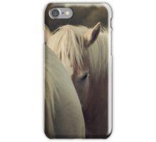 Haflinger Horse Hiding iPhone Case/Skin