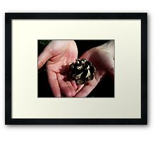 In these hands Framed Print