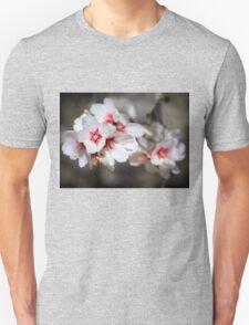 Almond Blossoms Unisex T-Shirt