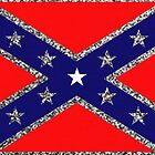 Confederate Glitter Flag by Emily Beal