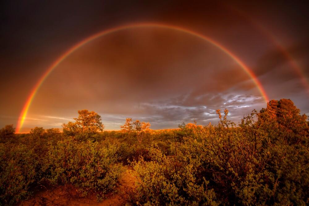 Rainbow Brush by Bob Larson
