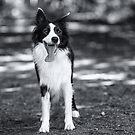 In black & white by Karen Havenaar