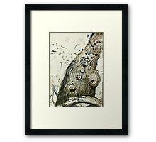 Maranoa river gum Framed Print