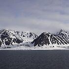 High Arctic Beauty by Phil Bain