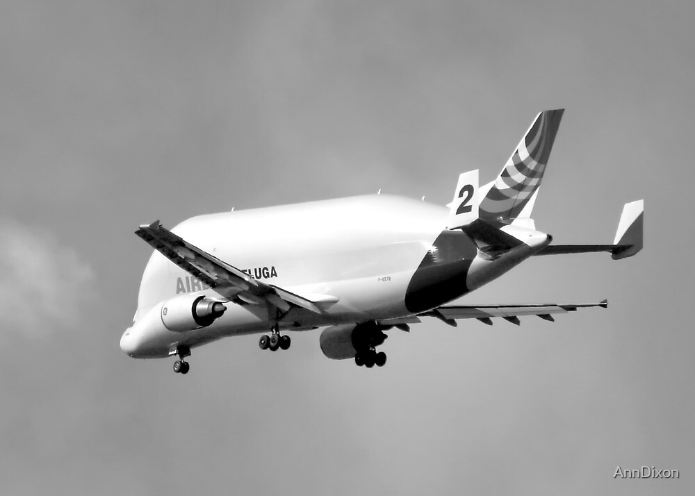 Beluga Transport Plane in B&W by AnnDixon