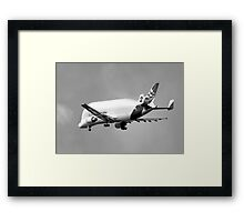 Beluga Transport Plane in B&W Framed Print