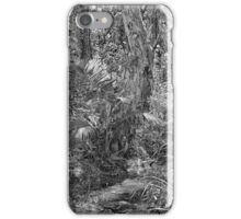 Rainforest stream and trees iPhone Case/Skin